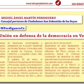 Unión en defensa de la democracia en Venezuela