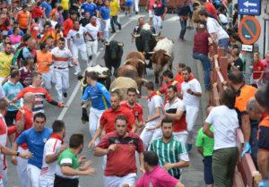 Fiestas Interés Turístico Internacional San Sebastián de los Reyes