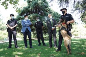 Unidad canina San Sebastián de los Reyes Policía Local Gobierno Martín Perdiguero